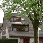 rotterdam (5)