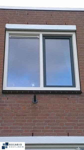 zoetermeer buizerdveld