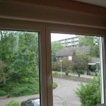 rozenburg waalstraat (8)